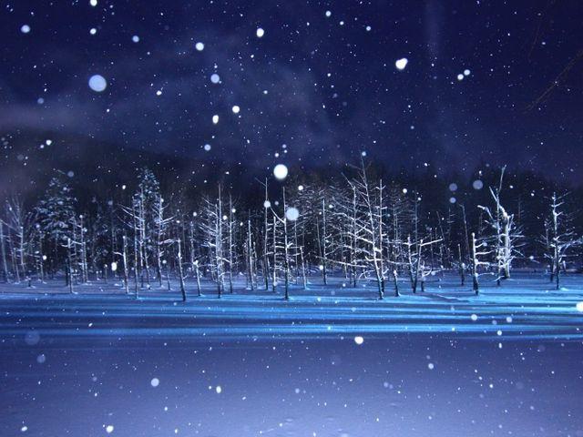 雪灯りも風情があります。_青い池