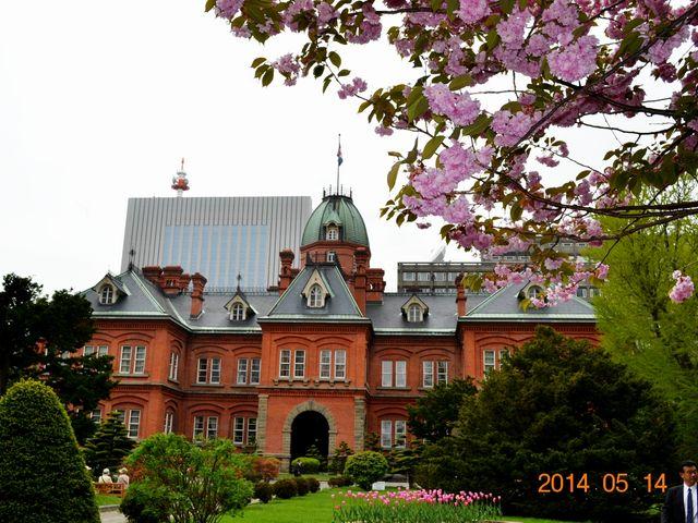 八重桜越しの旧道庁_北海道庁旧本庁舎