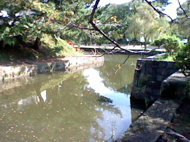 園内にはお堀などがきれいに残っていました。_亀城公園