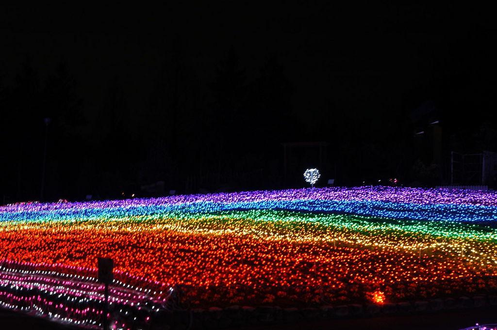 大阪府立 花の文化園