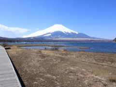 まこさんの山中湖交流プラザ「きらら」の投稿写真1