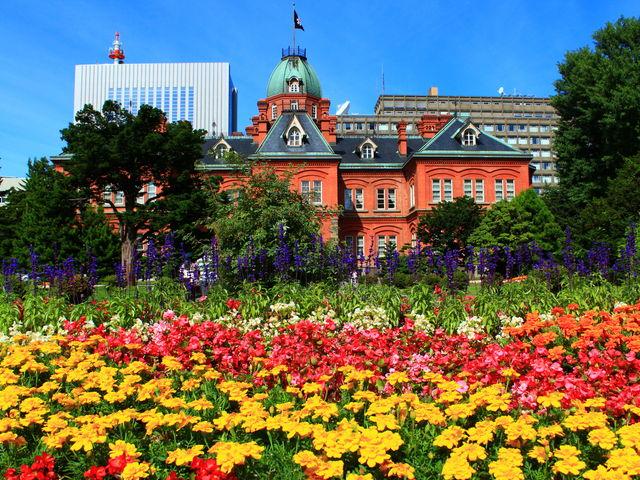 真夏の北海道と言えば花畑ですね。_北海道庁旧本庁舎