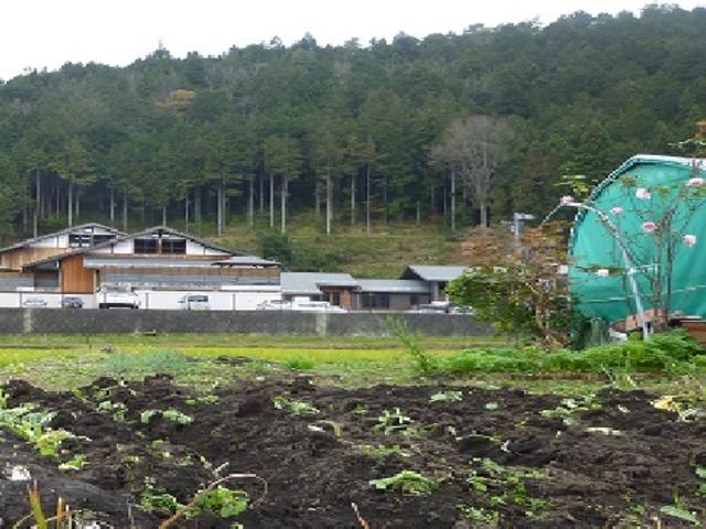 山間に立つ温泉施設_付知峡倉屋温泉 おんぽいの湯