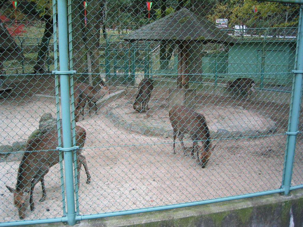 龍野公園動物園