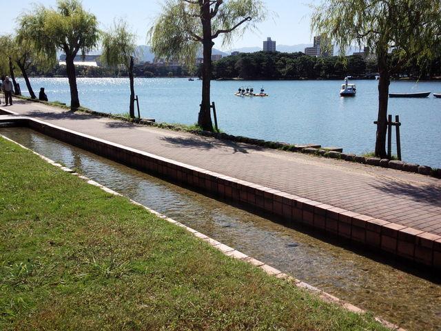 池と遊歩道_大濠公園