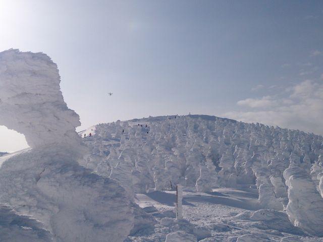 見渡す限り樹氷でした。_山形蔵王温泉スキー場