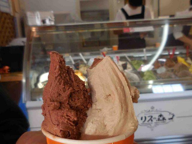チョコチップとマロン_Rimo(旧店名 リスの森)