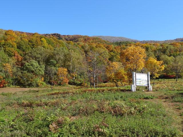 牧場の向かい側には、紅葉真っ盛りの高原が広がります_笹ヶ峰牧場