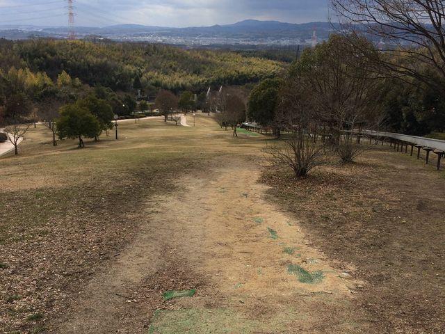 丘を登った場所からの景色。右に見えるのが滑り口です。_鴻ノ巣山運動公園