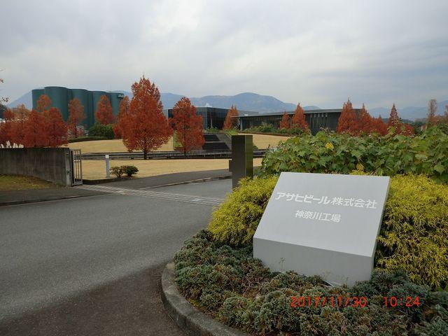 工場入り口までけっこう歩きます_アサヒビール神奈川工場