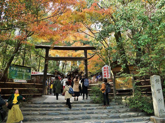 秋の野宮神社_野宮神社