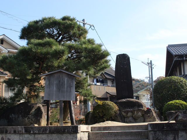 住宅街の中に松の木と石碑のみ_一乗寺下り松