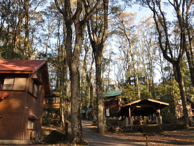 コテージ_御池キャンプ村
