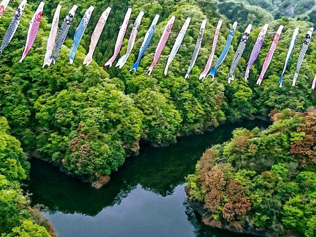 見事な鯉のぼり5_竜神大吊橋