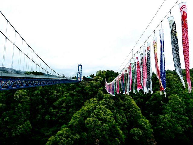 吊り橋と鯉のぼり2_竜神大吊橋