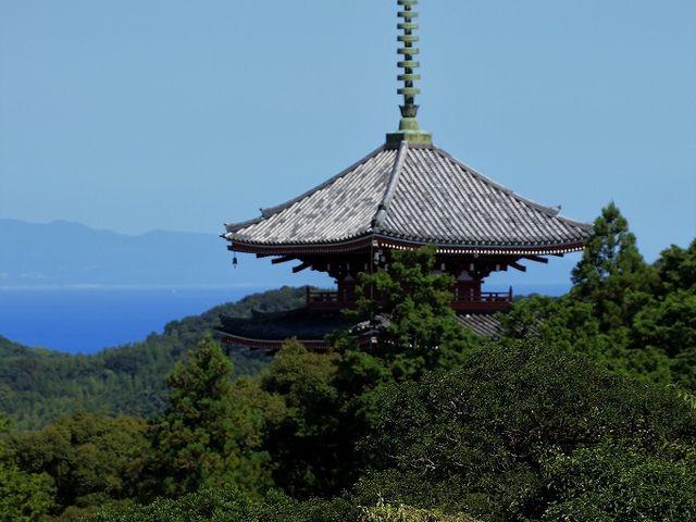 五台山展望台から見た竹林寺の塔。_竹林寺
