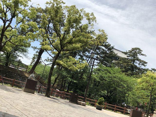 桜の陰に小倉城_リバーウォーク北九州