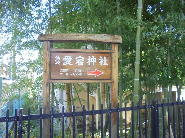 緑がいっぱい_愛宕神社