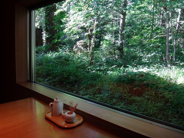 食事処の窓からも森が見えます。_平湯温泉