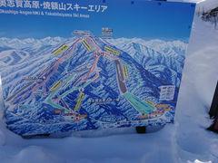 スキー 志賀 場 高原