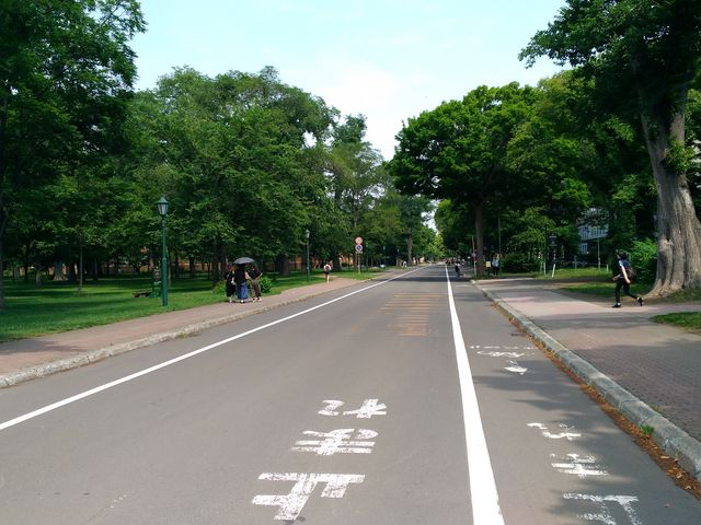 風景_北海道大学