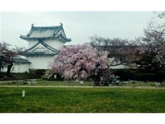 入口の櫓と百間廊下_姫路城百間廊下