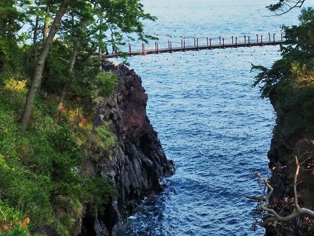 夢の懸け橋 _城ケ崎つり橋(はしだて)