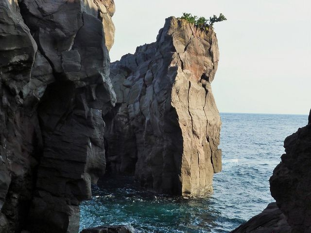 波の心_城ケ崎つり橋(はしだて)