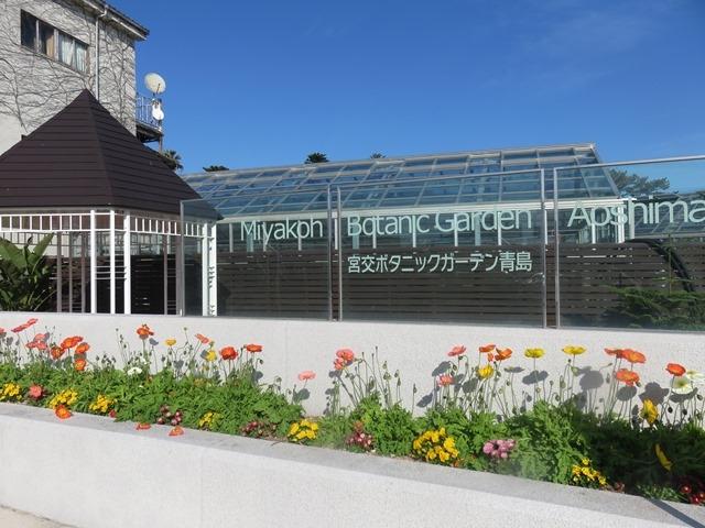 外観_青島亜熱帯植物園