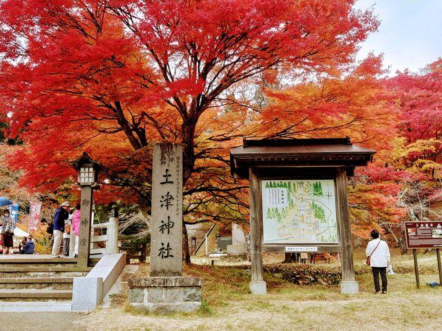 見事な紅葉_土津神社