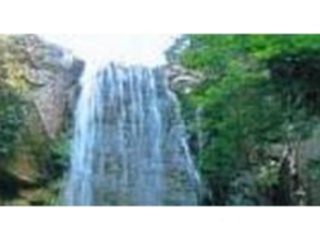 渓谷の緑の中を流れ落ちる銚子の滝_小豆島銚子渓自然動物園 お猿の国