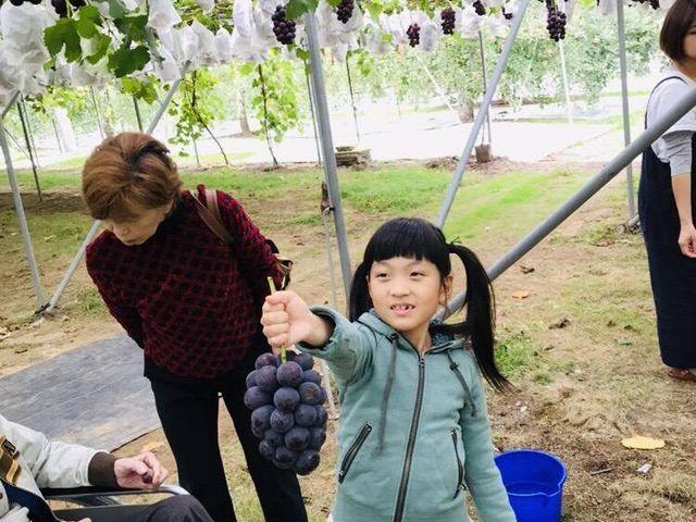 お子様もお楽しみいただけます♪_まるえ観光果樹園