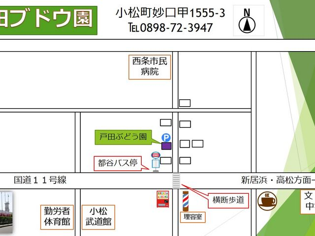 地図になります。分からない方は遠慮なく電話ください。_戸田果樹園