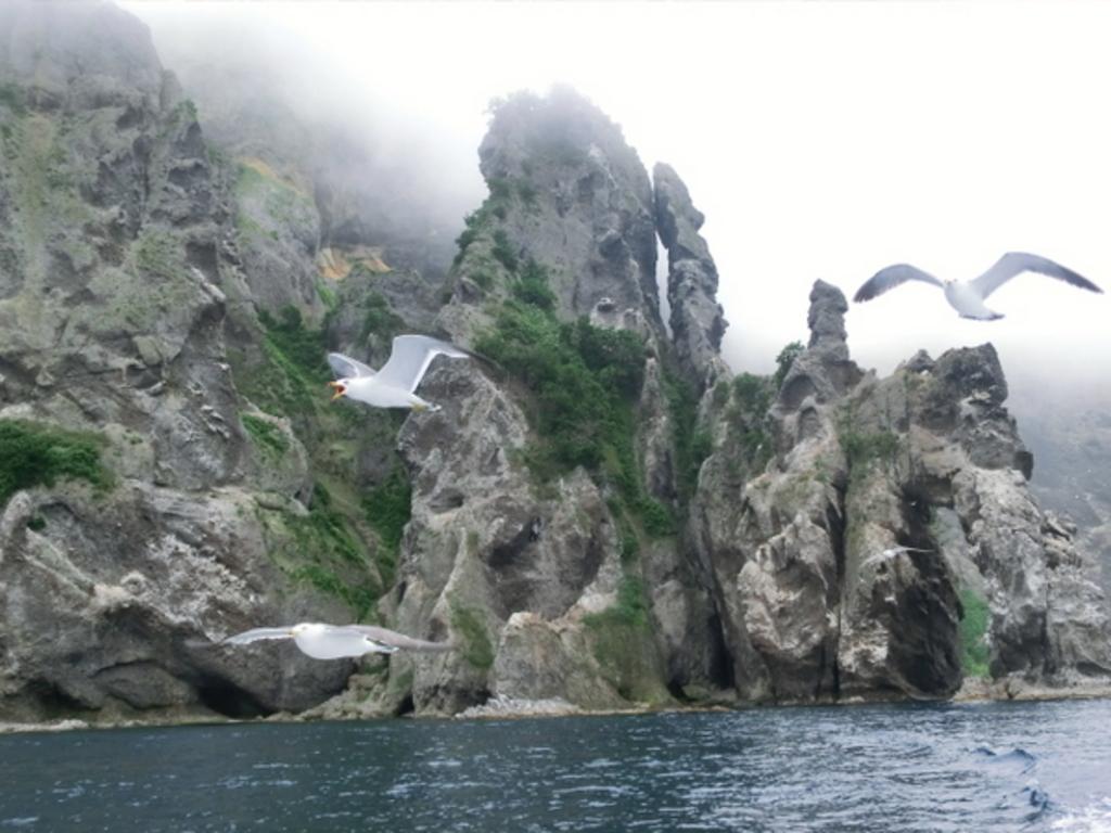 小樽港~祝津~オタモイ海岸遊覧船