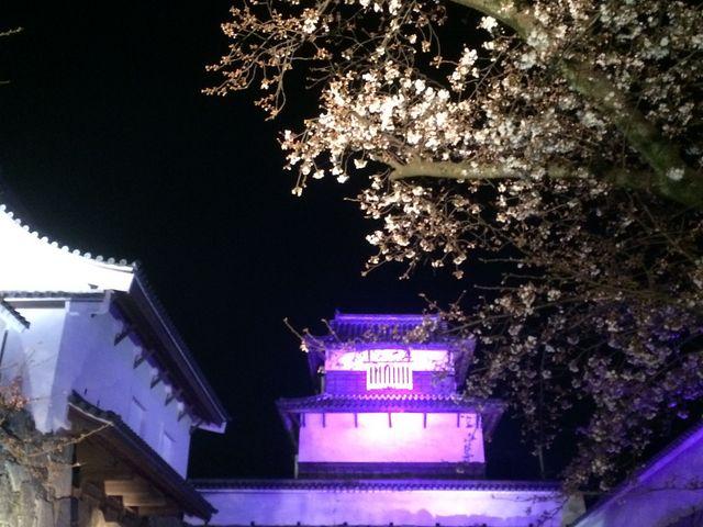 櫓_福岡城跡