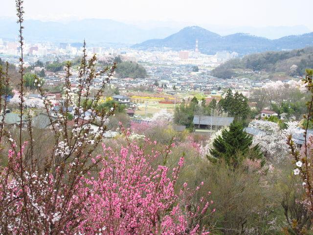 山の上の方からは福島市街が一望できます_飯坂温泉花ももの里