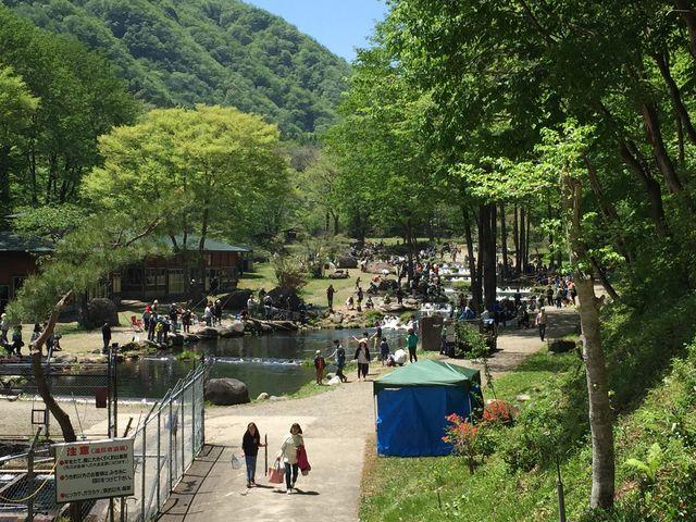 5月GW!新緑がとてもきれいでした!BBQもできますよ!_新東北笹谷渓流釣り