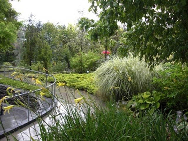 庭です。雨の日も趣がある_軽井沢千住博美術館