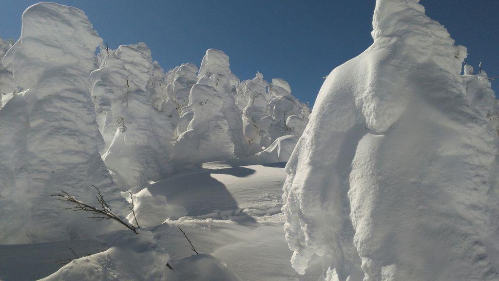 樹氷(山形県上山市蔵王坊平高原)
