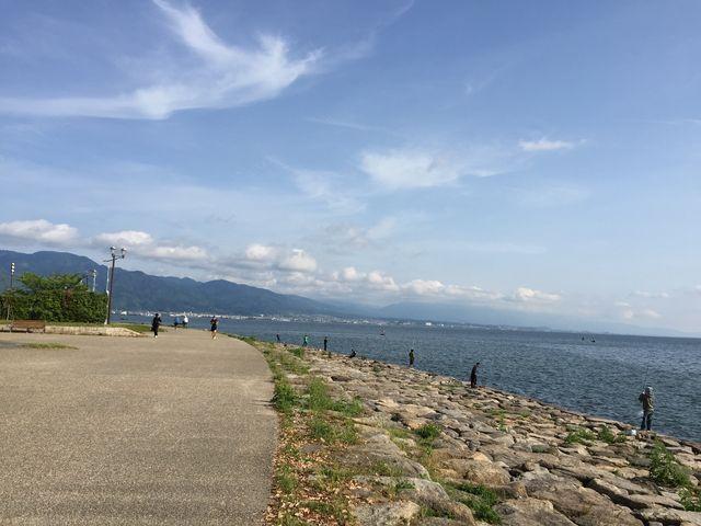 散歩、サイクリング、バス釣り…人其々の憩いの場です。_なぎさ公園