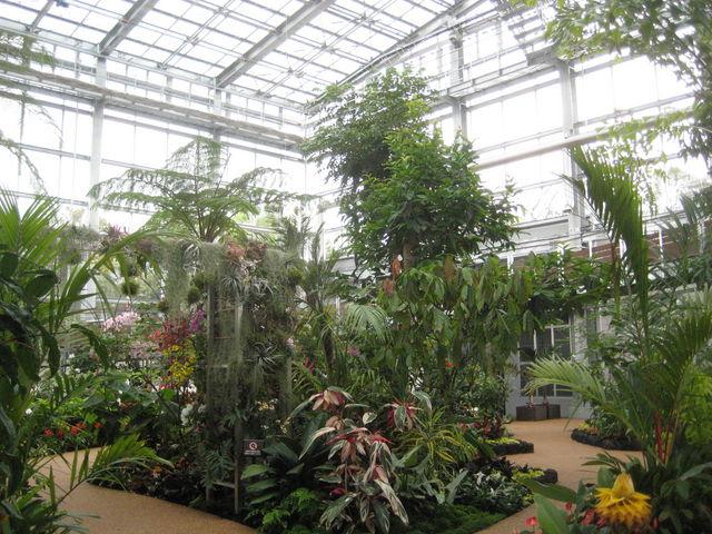 中の様子_青島亜熱帯植物園