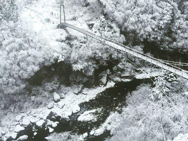 散策した次の日の朝。夜に雪が降ったらしく一面の銀世界。_鬼怒楯岩大吊橋