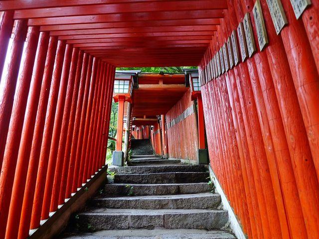 鳥居のトンネルになっています。_太皷谷稲成神社
