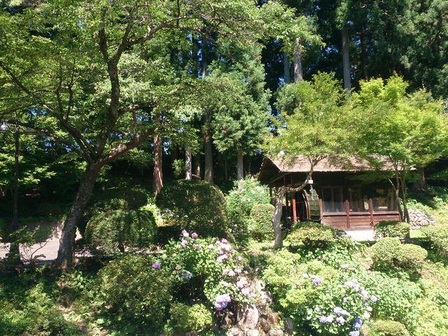 山の中。_大沢温泉