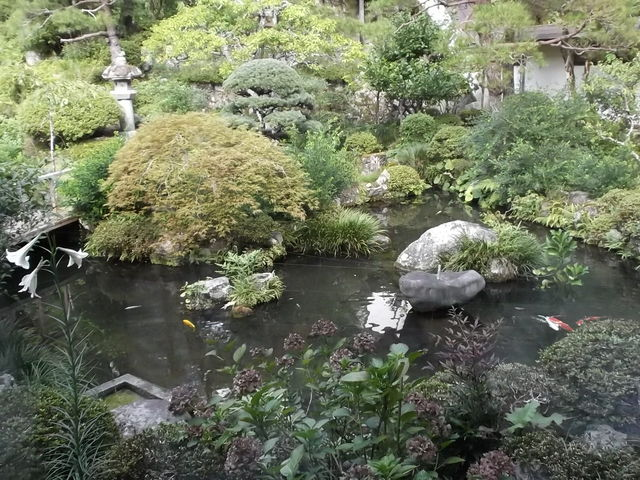 庭園_覚林坊の庭園