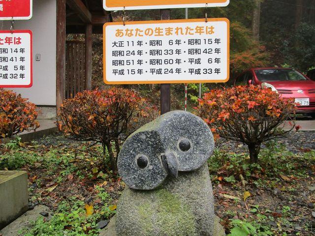 探すのも楽しいです_鷲子山上神社