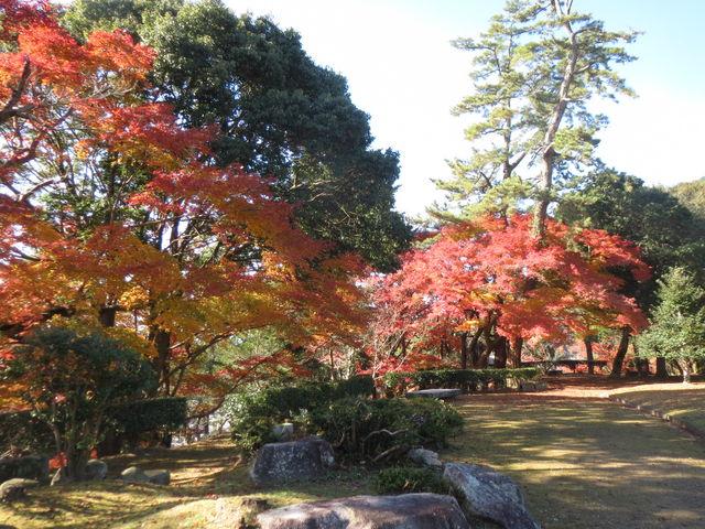 亀山公園_サビエル記念聖堂