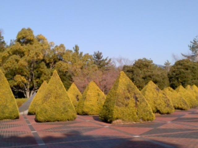 これぞ芸術です_芸術の森公園