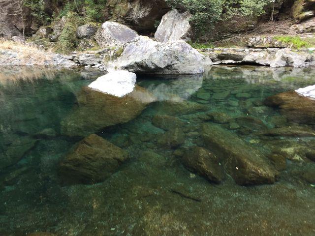 水が透き通って綺麗‼_中津渓谷ゆの森