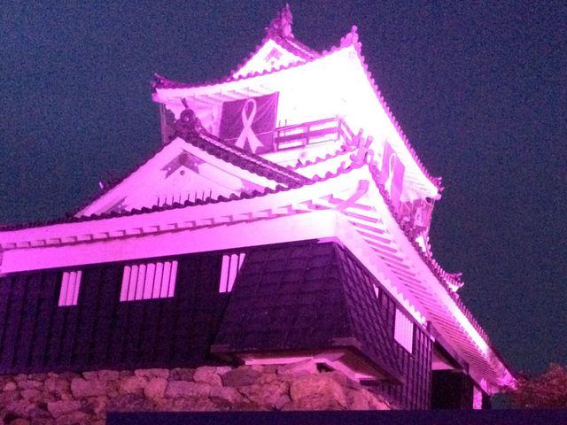 ピンク色ライトアップ_浜松城
